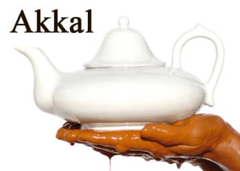 Akkal Marrakech