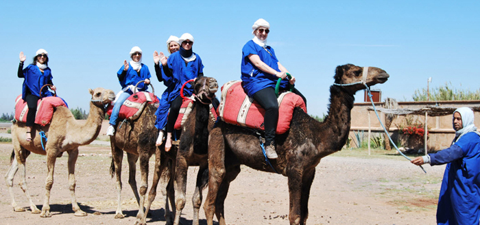 Maroc Loisirs dromadaires