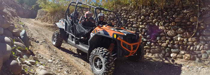 RZR 900 EFI XP4 POLARIS